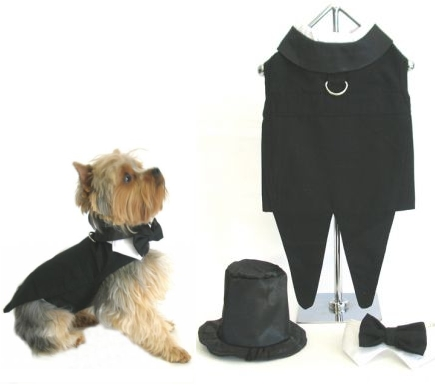 costume smocking doggie design accessoires pour chiens et chats. Black Bedroom Furniture Sets. Home Design Ideas